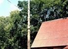 Сухое дерево, нависающее над кровлей дома